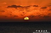 2013船帆石夕照-本港活海產:1201645962.jpg