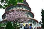 2013天元宮:1831719111.jpg