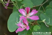 台北市客家文化主題公園:1669915101.jpg