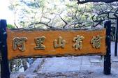 2012_阿里山櫻花季:DSC_8193.jpg