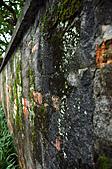 2010.11.20~21_福山植物園&林美石磐步道&蘭陽博物館:DSC_0003.JPG