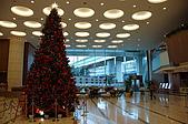 2007 亞洲職棒大賽東京3天2夜之旅_day.2_上野公園:大廳的聖誕樹,附近都有過聖誕的氣息了。