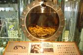 2007年8月30日~9月2日_沖繩之旅_Day2:泡蛇酒(裡面是真的蛇喔)