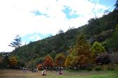 2013.11.17_武陵農場:DSC_9396.jpg