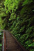 2010.11.20~21_福山植物園&林美石磐步道&蘭陽博物館:DSC_0173.JPG