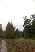 2010.11.20~21_福山植物園&林美石磐步道&蘭陽博物館:DSC_0082.JPG
