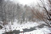 2013.12.29~2014.01.02_北海道跨年之旅DAY5:DSC_1211.jpg