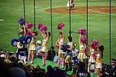 2007 亞洲職棒大賽特別篇_啦啦隊:中日龍啦啦隊,因為我坐太遠了,拍不太到