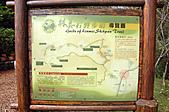 2010.11.20~21_福山植物園&林美石磐步道&蘭陽博物館:DSC_0164.JPG