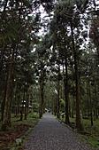 2010.11.20~21_福山植物園&林美石磐步道&蘭陽博物館:DSC_0102.JPG