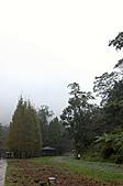 2010.11.20~21_福山植物園&林美石磐步道&蘭陽博物館:DSC_0088.JPG