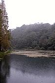2010.11.20~21_福山植物園&林美石磐步道&蘭陽博物館:DSC_0142.JPG