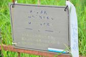 2013.06.15~16_鎮西堡:DSC_5597.jpg
