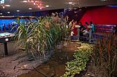 2010.11.20~21_福山植物園&林美石磐步道&蘭陽博物館:DSC_0279.JPG