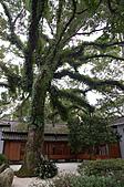 2010.11.20~21_福山植物園&林美石磐步道&蘭陽博物館:DSC_0038.JPG