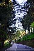 2012_阿里山櫻花季:DSC_8182.jpg