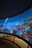 2010.11.20~21_福山植物園&林美石磐步道&蘭陽博物館:DSC_0261.JPG