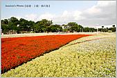 Xuite活動投稿相簿:愛現花遊記-萬紫千紅,一片晴朗