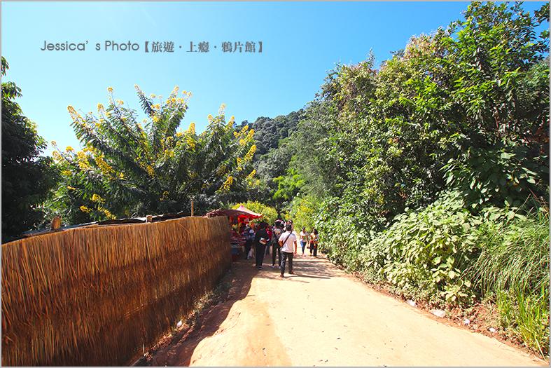 泰北:IMG_6632.jpg