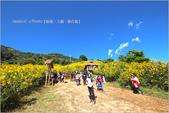 泰北:IMG_6637.jpg