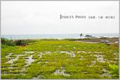 台東:IMG_7592.jpg
