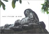 台南:IMG_0491.jpg