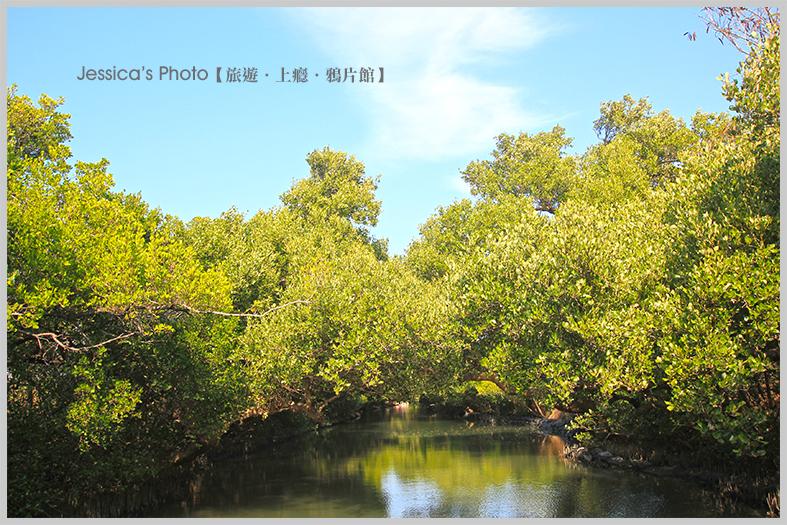 台南:IMG_9588.jpg