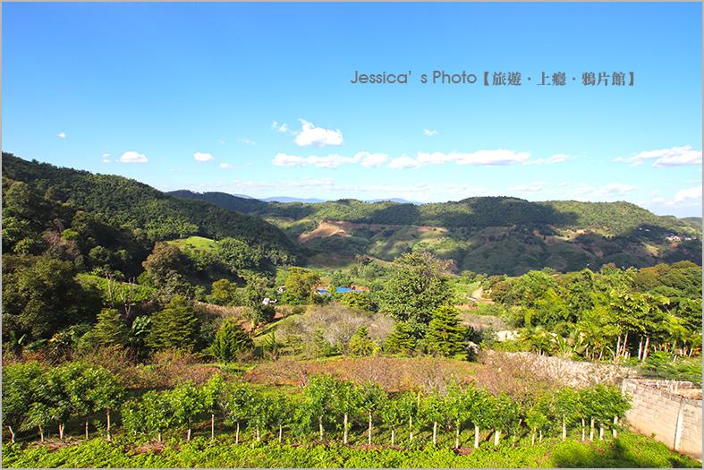 泰北:IMG_6593.jpg