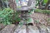 台北:IMG_6694.jpg