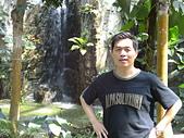 我的生活:植物園.JPG
