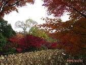 My Blog:植物園-2
