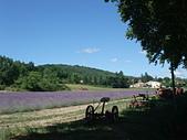 法國-Provence-2:Apt-3137