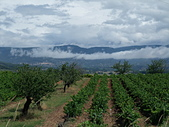 法國-Provence-2:Bonnieux-3270