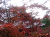 My Blog:神護寺-2