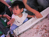 撈魚篇:PIC_0490.JPG