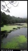 20121124 福山植物園:福山植物園001.jpg