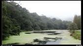 20121124 福山植物園:福山植物園002.jpg
