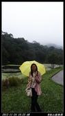 20121124 福山植物園:福山植物園003.jpg