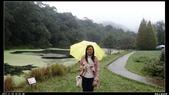 20121124 福山植物園:福山植物園004.jpg