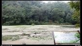 20121124 福山植物園:福山植物園007.jpg