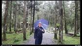 20121124 福山植物園:福山植物園009.jpg