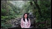20121124 福山植物園:福山植物園012.jpg