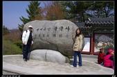 韓國櫻花:韓國261.jpg
