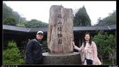 20121124 福山植物園:福山植物園020.jpg