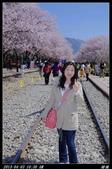 韓國櫻花:韓國059.jpg