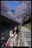 韓國櫻花:韓國154.jpg