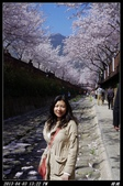韓國櫻花:韓國156.jpg