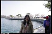 韓國櫻花:韓國174.jpg