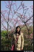 20130119 巧克力雲莊+花露休閒農場:巧克力雲莊015.jpg