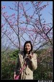20130119 巧克力雲莊+花露休閒農場:巧克力雲莊016.jpg